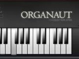 <b>Organaut</b>