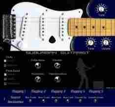 <b>Suburban Guitarist</b>